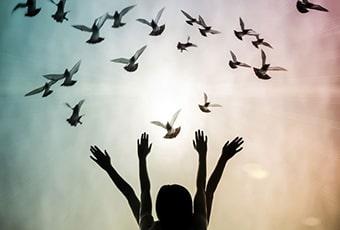 A liberdade por meio da consciência tumb